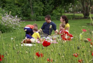 Vrijbroekpark (Provincie Antwerpen)
