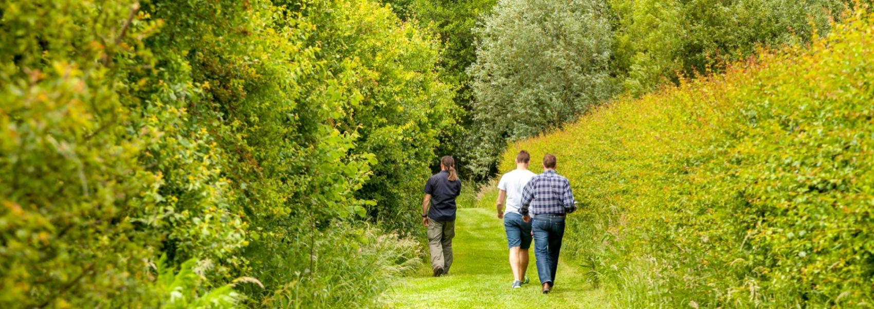 3 mensen aan het wandelen
