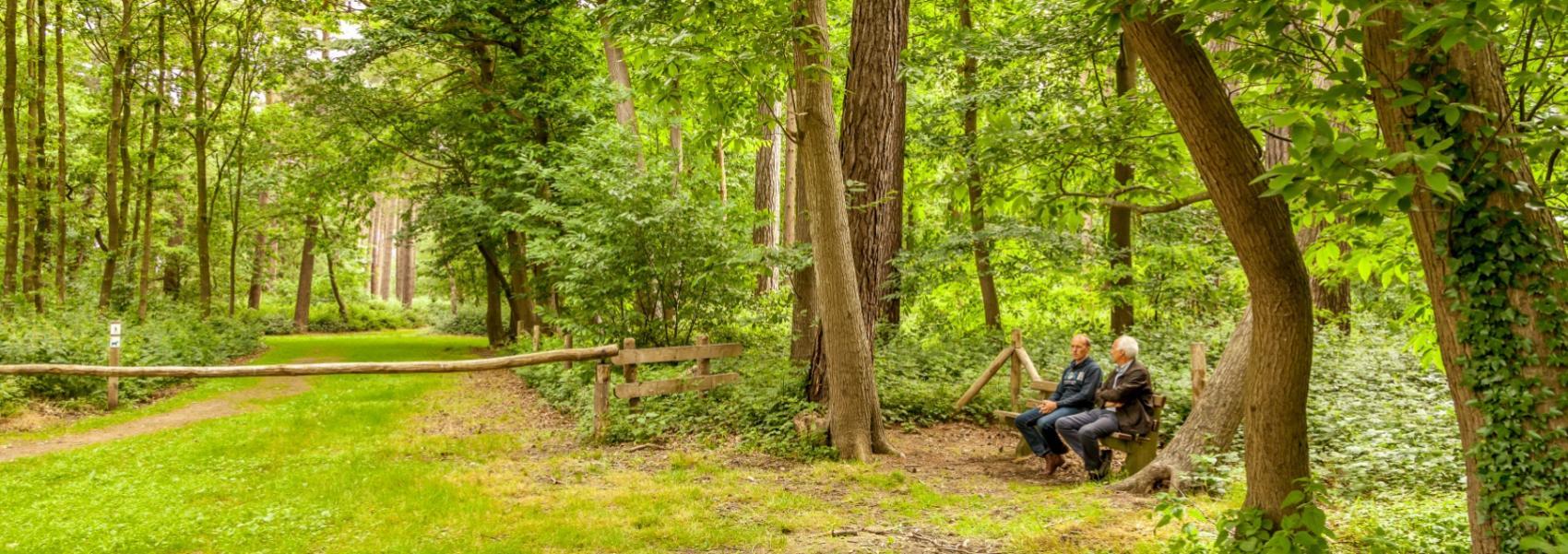 2 mannen op een bankje in het bos