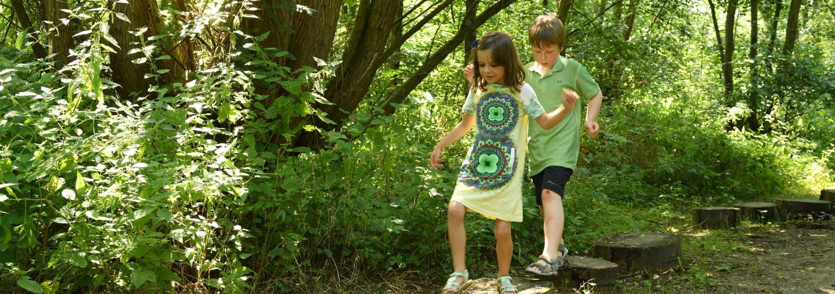Kinderen lopen op boomstammetjes