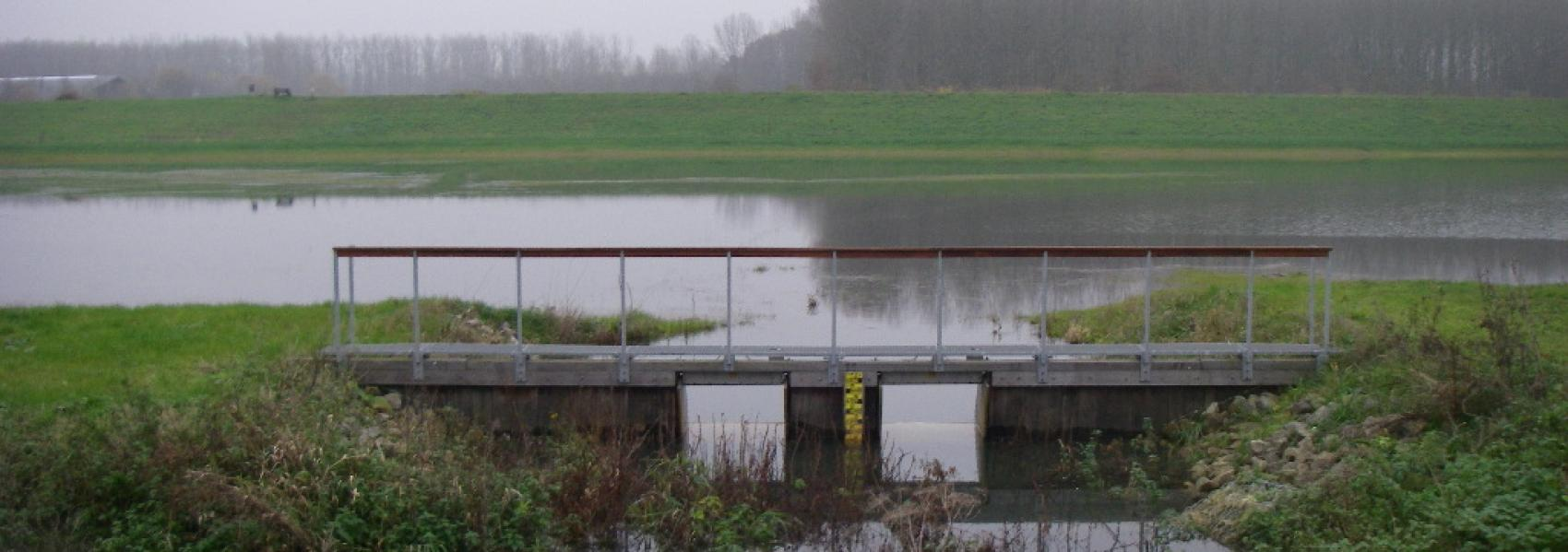 voetgangersbrug over het water in Bleukensweide