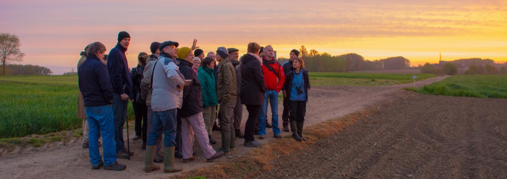 groep tijdens gidsbeurt bij zonsondergang