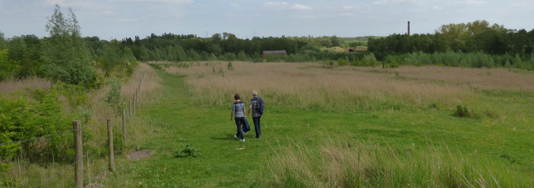 wandelaars in het natuurgebied