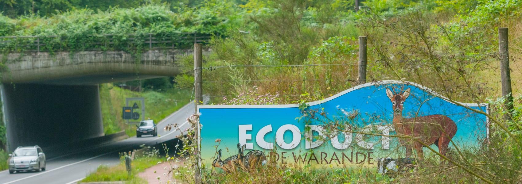 Ecoduct De Warande