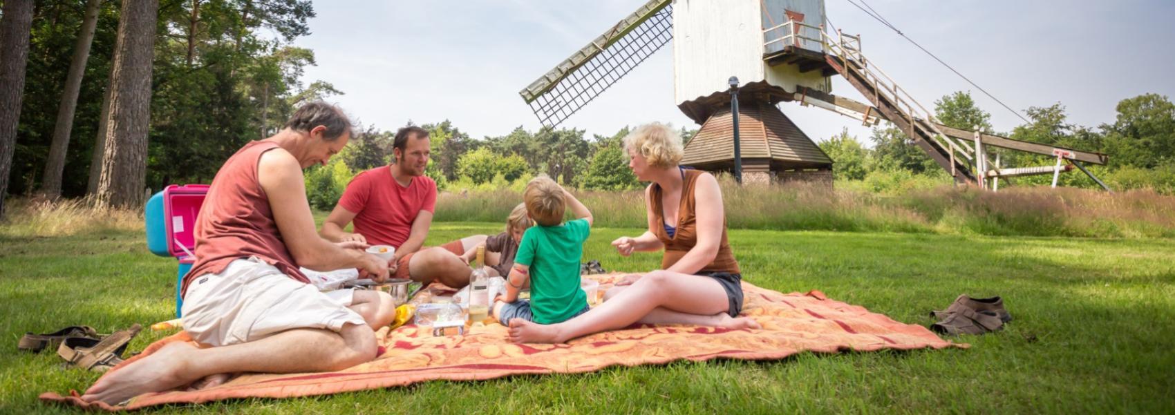 gezin dat picknickt bij de molen