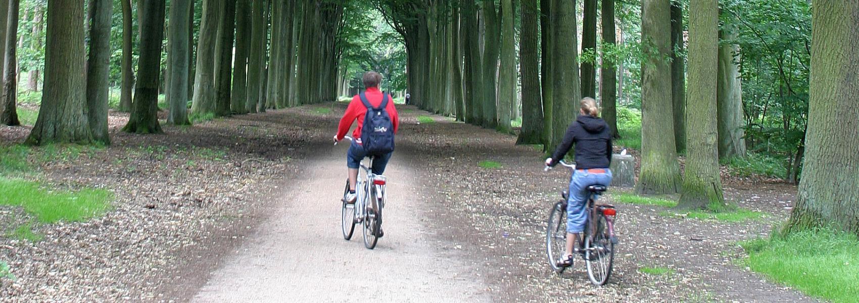 fietsers in een dreef