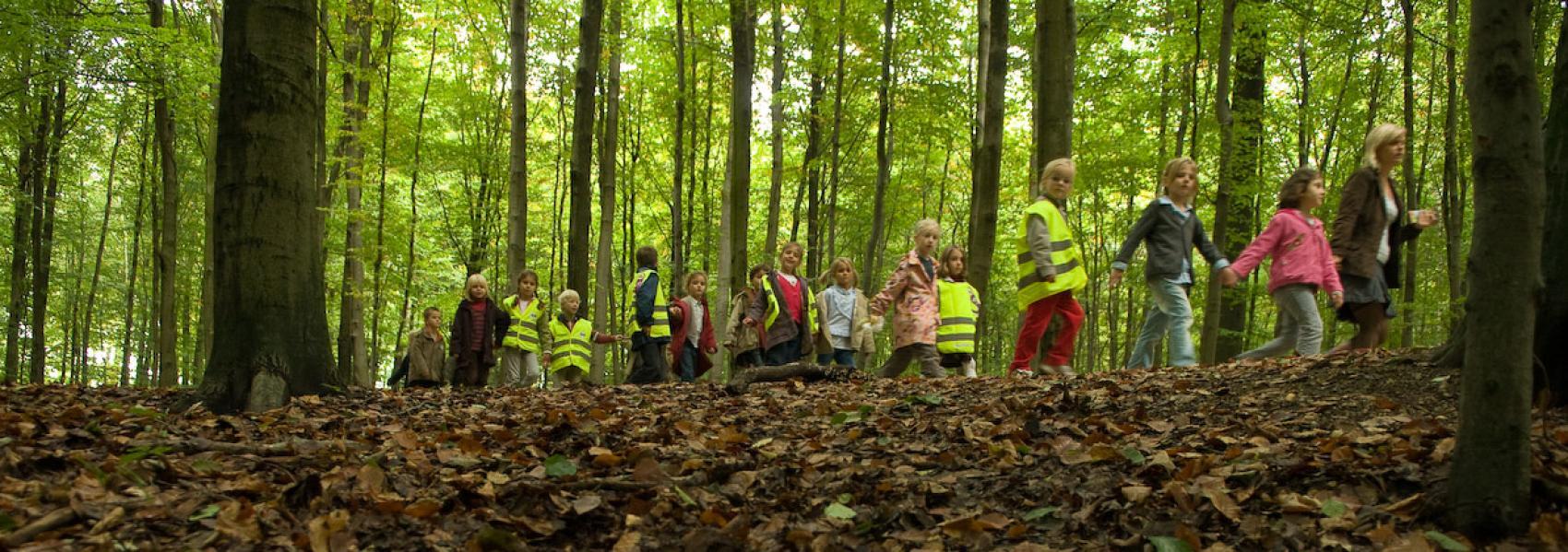 groep kinderen op stap in het bos