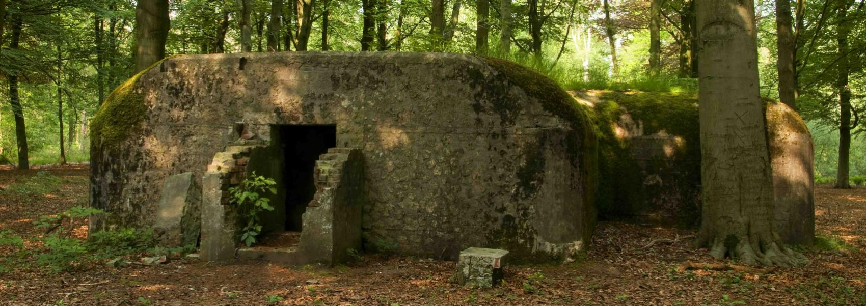 bunker in het bos