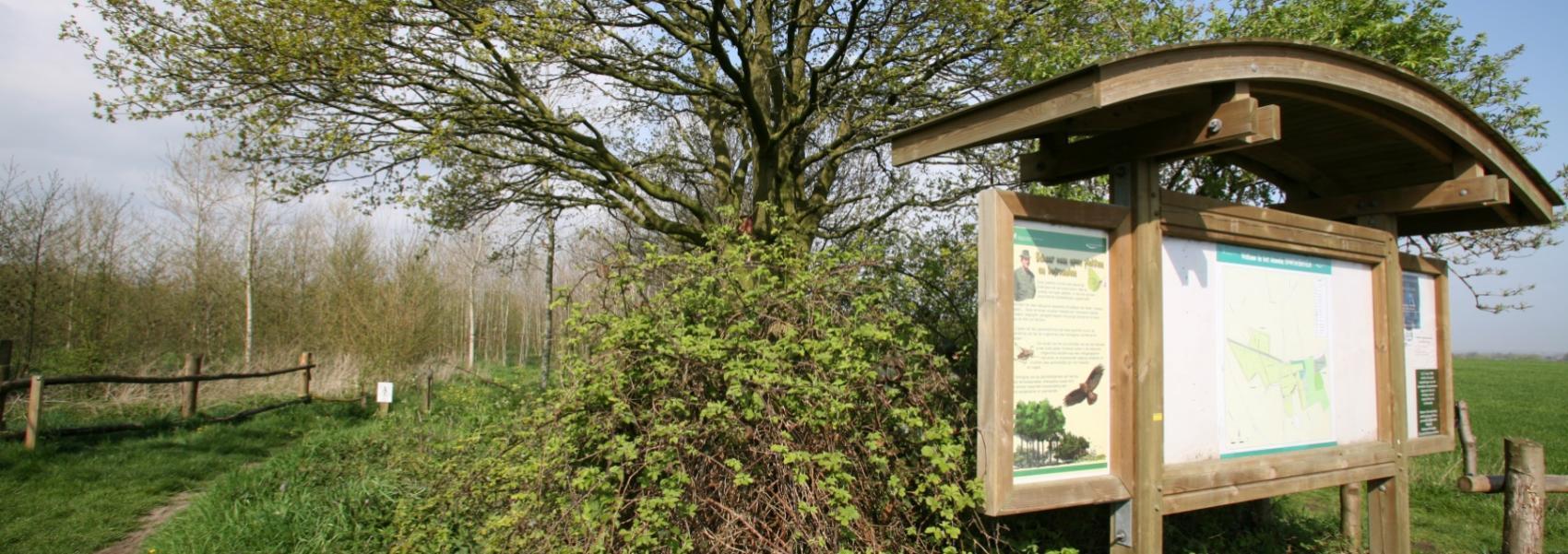 infobord naast een boom