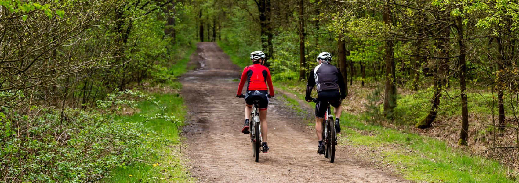 mountainbikers op het pad