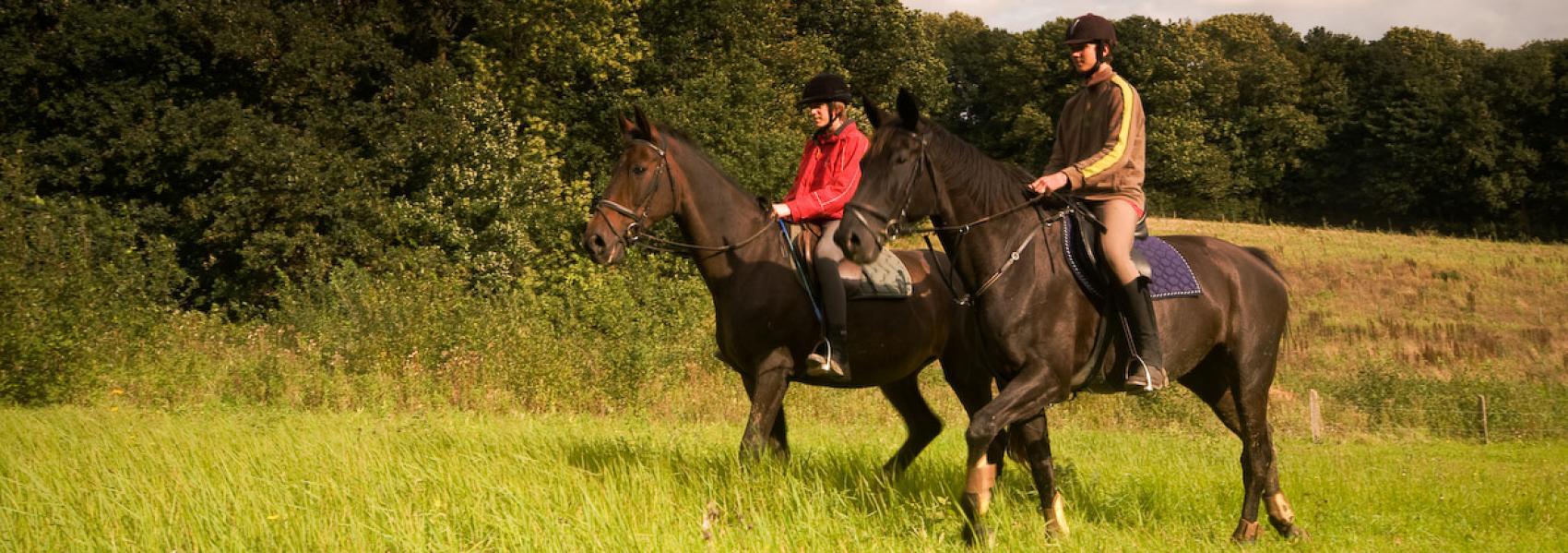 Paardrijden in het Heuvelland