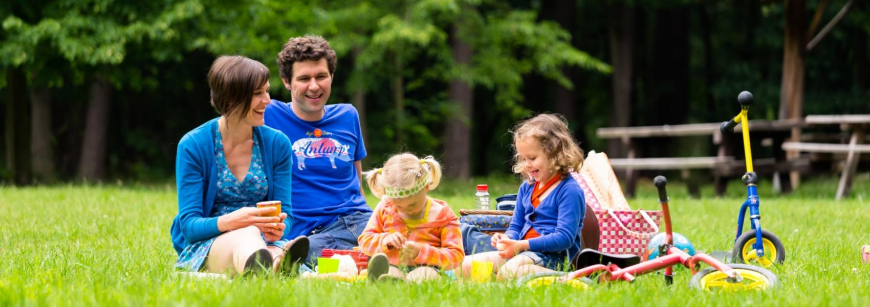 gezin dat picknickt in het gras