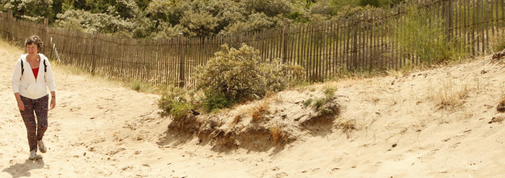 wandelaarster in de duinen
