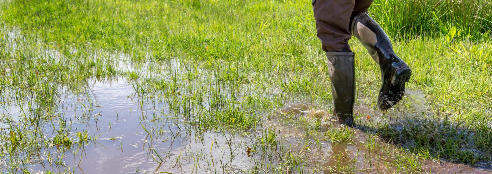 laarzen in het water