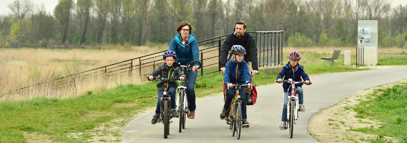 fietsers in de polders