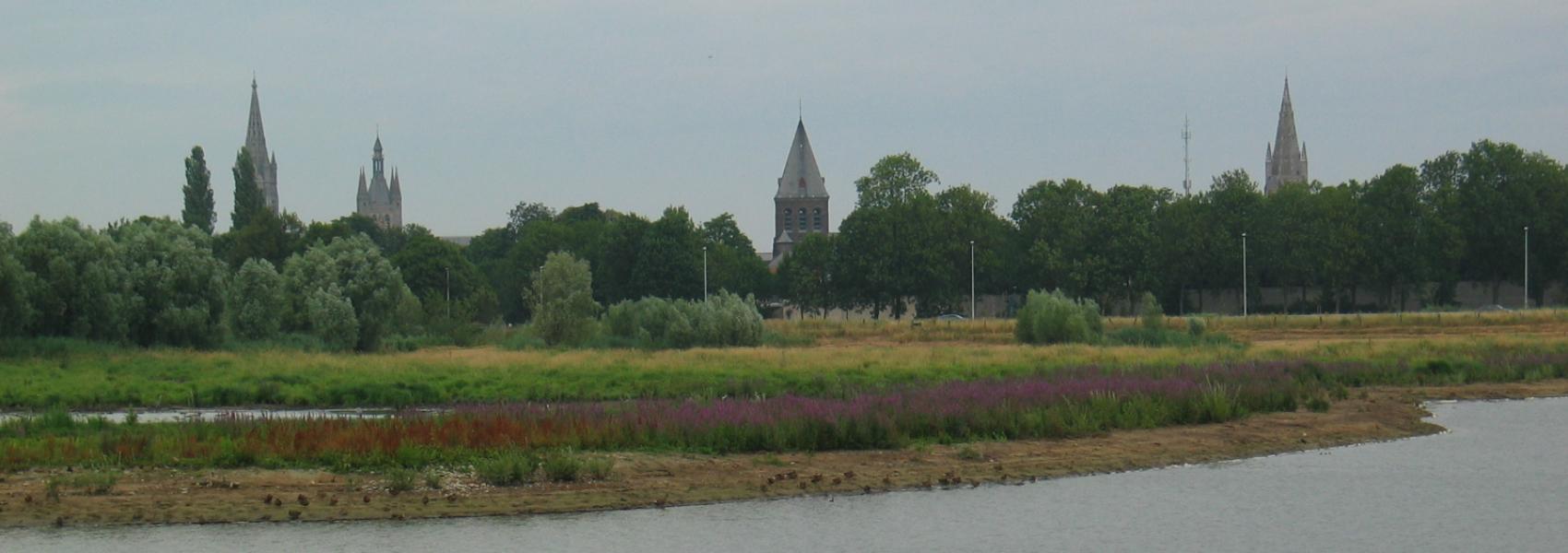 zicht op het water en graslandschap met op de achtergrond de stad Ieper