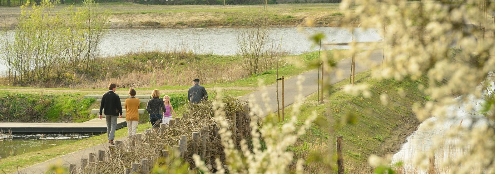 wandelaars in de polders