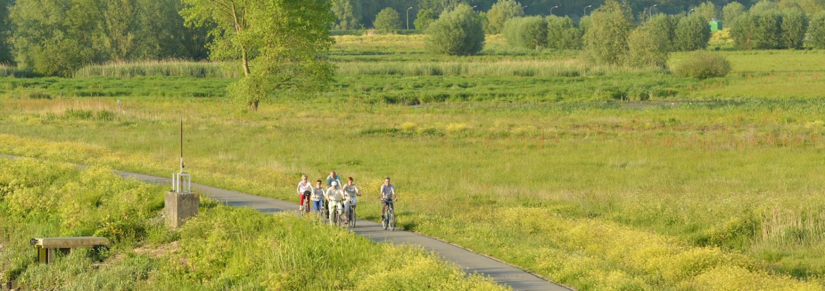fietsers in het landschap