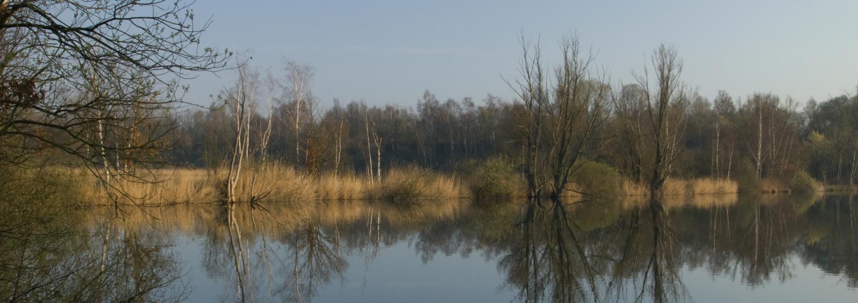 zicht over het water met op de achtergrond bomen