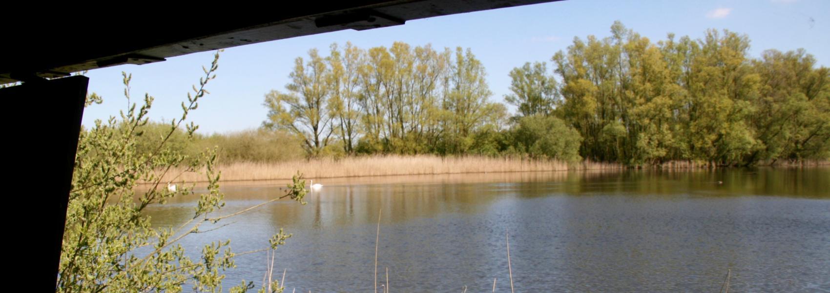 zicht op het water vanuit de kijkhut