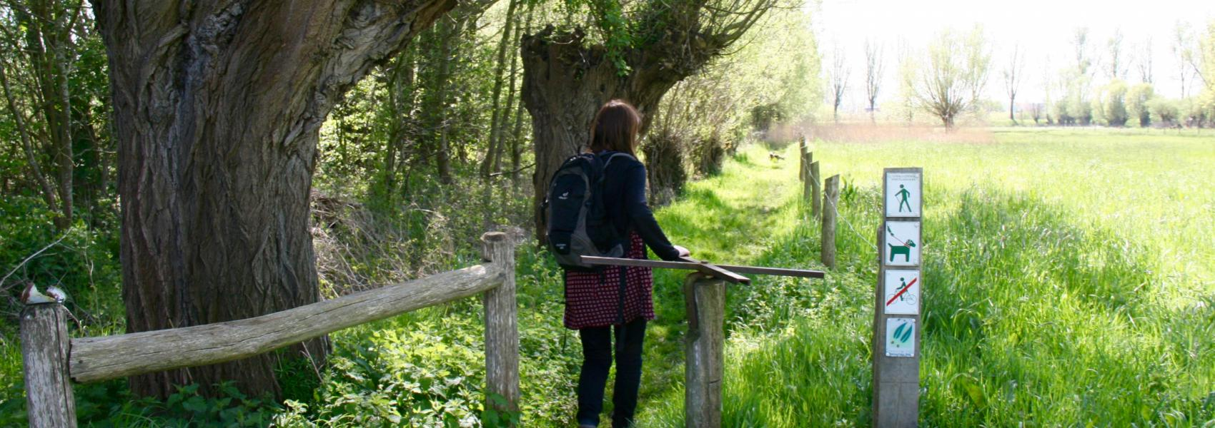 wandelaar bij wandelsas