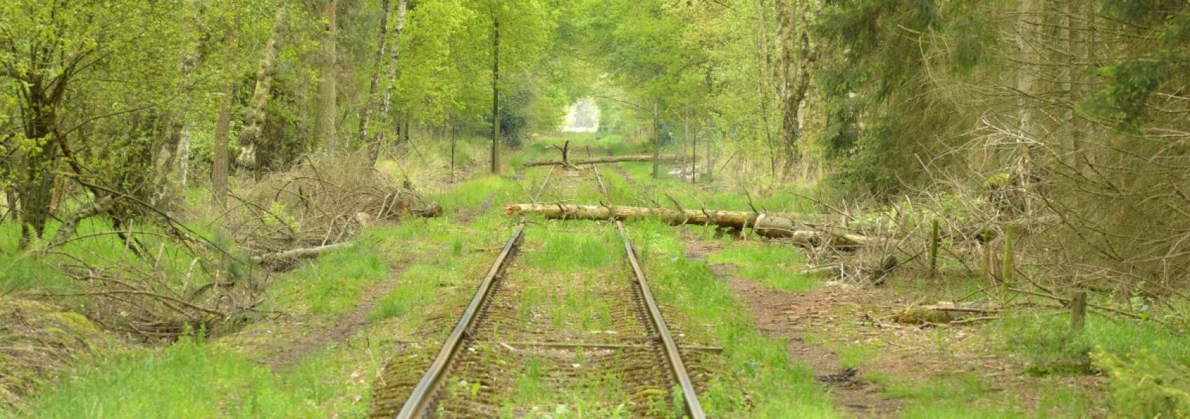 spoorweg in Uitlegger