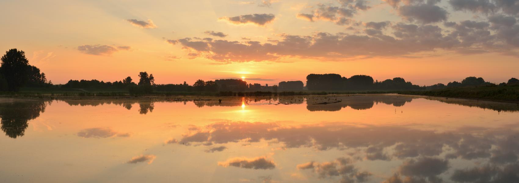 zicht over de paardeweide bij zonsondergang